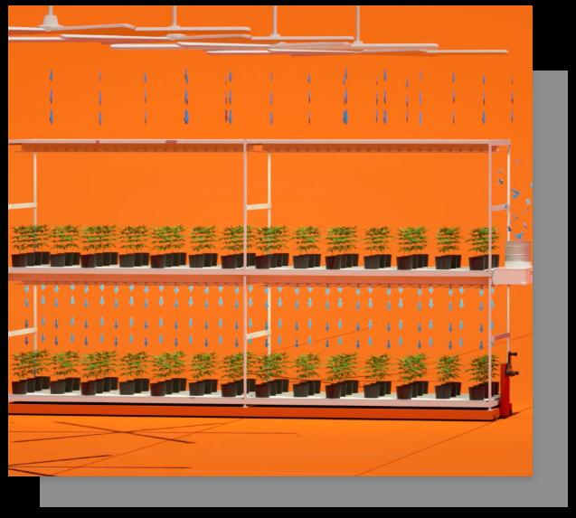 VAS System Diagram